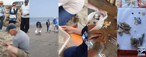 Los científicos de la basura, guiados por el Dr. Thiel muestrearon amplias zonas de las playas de Santa Elena, segmentando la playa, moviendo, recogiendo, en otros casos cerniendo la arena para encontrar los fragmentos más pequeños que el ojo humano pudiera detectar, luego esta basura era llevada al laboratorio, separada y catalogada para ingresar en una base de datos, la primera realizada en el Ecuador sobre la basura que hallada en las playas. Arte: Unidad de Comunicación Social del INP – Fotos: M Carriel.