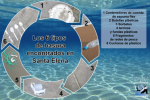 Infografía: Unidad de Comunicación Social del INP – Fotos: M Carriel