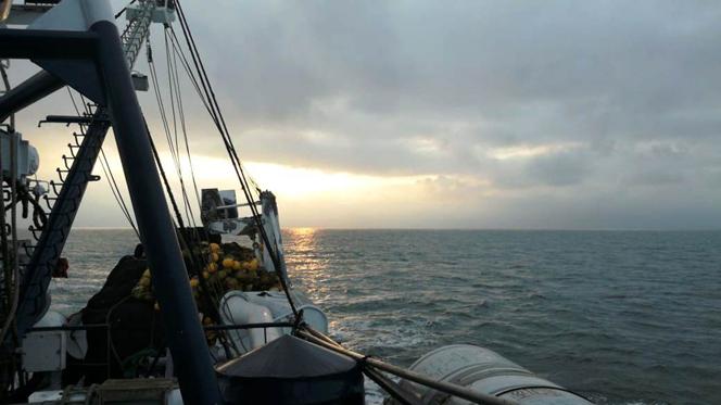 Condiciones oceanográficas de la Primera fase del Crucero Hidroacústico y Pesca Comprobatoria de Ppp