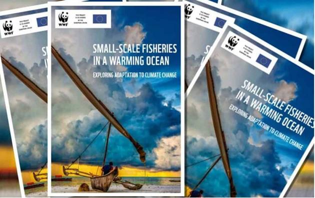 Informe sobre el impacto climatico en la pesca artesanal senala la necesidad de medidas urgentes para que los pescadores artesanales resistan la crisis climatica