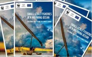 Informe sobre el impacto climático en la pesca artesanal señala la necesidad de medidas urgentes para que los pescadores artesanales resistan la crisis climática