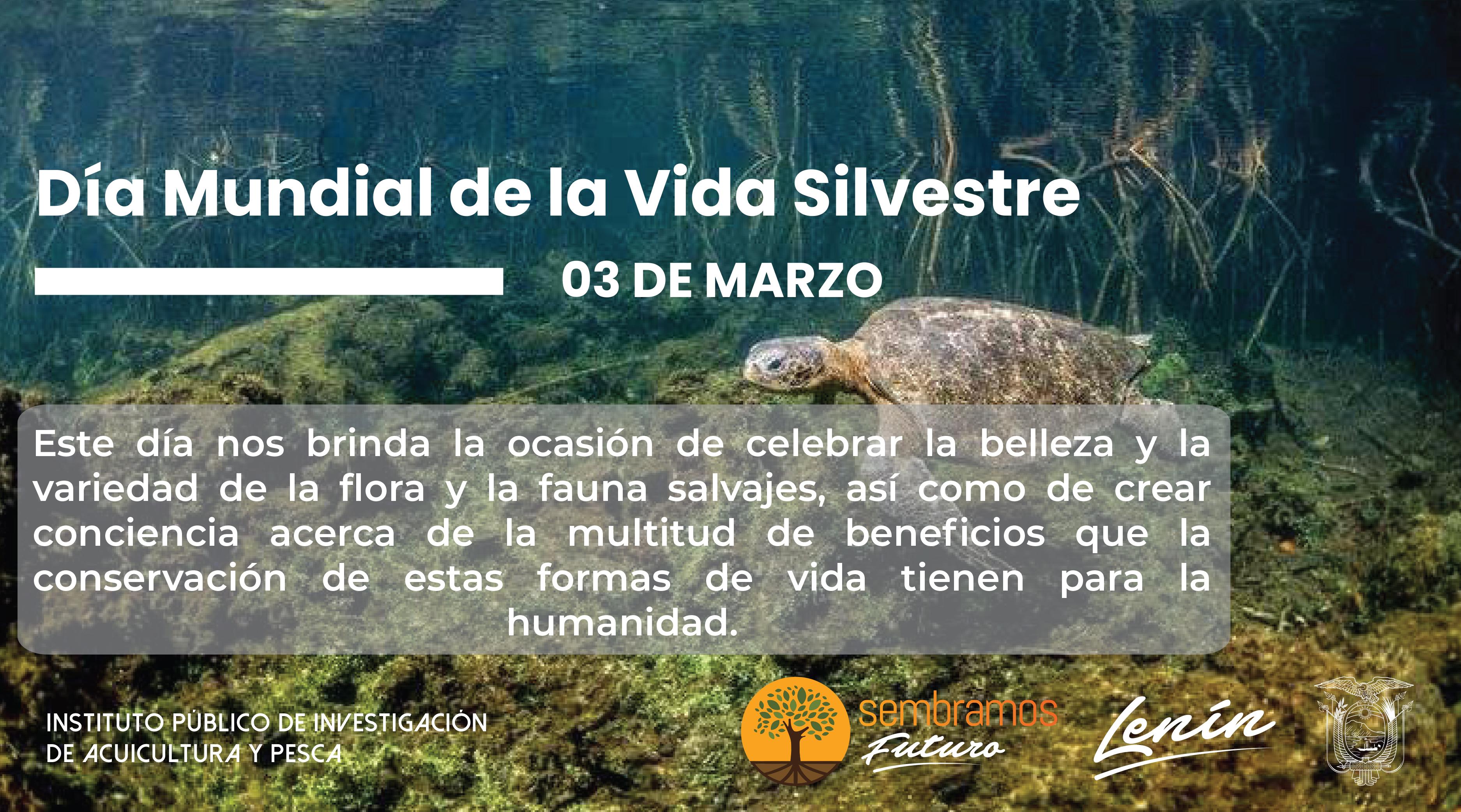 El Día Mundial de la Vida Silvestre