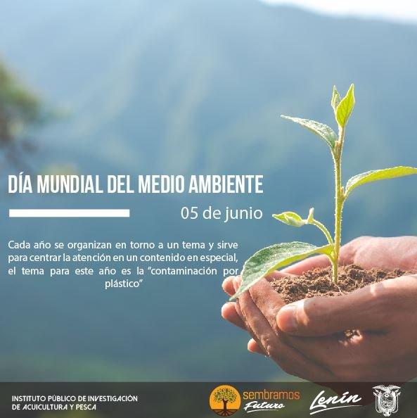 2. Dia mundial del medio ambiente (05 de junio)